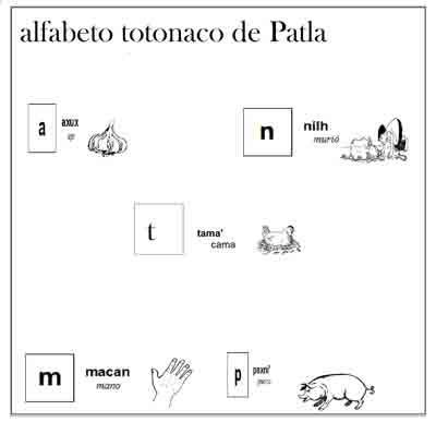 Alfabeto totonaco de Patla.pub2k.jpg